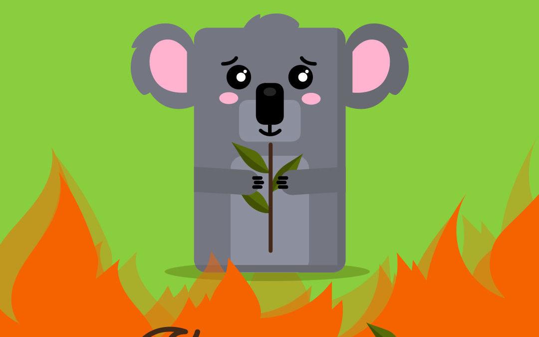 Koala, koaplulà